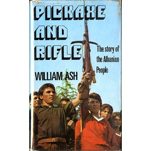 cover pickaxe and rifle William Ash