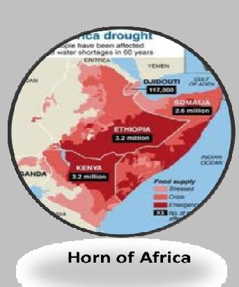 Famine in Africa or denial of food?